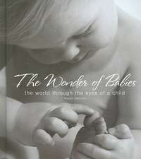 The Wonder of Babies:  The World Through the Eyes of a Child
