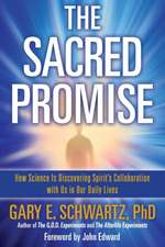 Sacred Promise: How Science Is Discovering Spirit's Collaboration with Us in Our Daily Lives