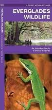 Everglades Wildlife:  A Folding Pocket Guide to Familiar Species