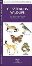 Grasslands Wildlife:  An Introduction to Familiar Species Found in Prairie Grasslands