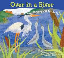 Over in a River:  Flowing Out to the Sea