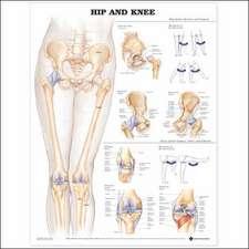 Hip and Knee Anatomical Chart