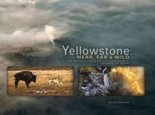 Yellowstone:  A Comprehensive Look at Our First National Park, Including the Tetons