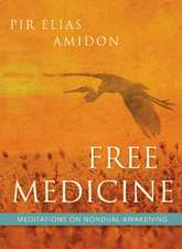 Free Medicine: Meditations on Nondual Awakening