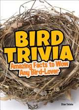 Bird Trivia: Amazing Facts to Wow Any Bird-Lover