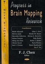 Progress in Brain Mapping Research