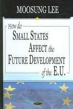 How Do Small States Affect the Future Development of the EU