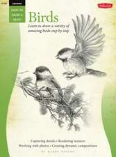 Drawing:  Learn to Draw a Variety of Amazing Birds Step by Step