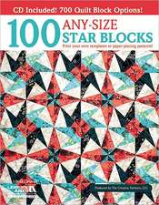 100 Any-Size Star Blocks (with CD)