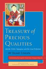 Treasury of Precious Qualities, Book Two:  The Rain of Joy