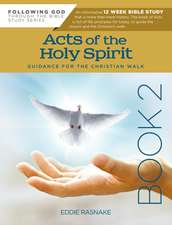 Acts of the Holy Spirit Book 2: Guidance for the Christian Walk