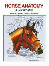 Horse Anatomy: A Coloring Atlas