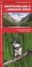 NEWFOUNDLAND BIRDS A FOLDING POCKET G