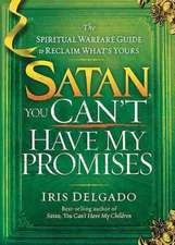 Satan, You Can't Have My Promises:  The Spiritual Warfare Guide to Reclaim What's Yours