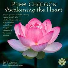 Pema Chodron 2019 Wall Calendar