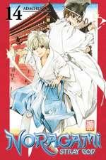 Noragami Volume 14
