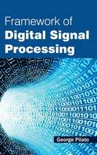 Framework of Digital Signal Processing
