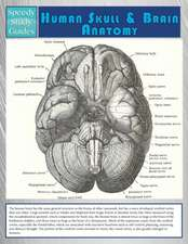 Human Skull and Brain Anatomy (Speedy Study Guide):  Tips on Starting Your Own Profitable Home Business