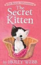 The Secret Kitten