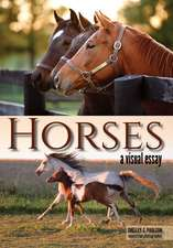 Horses: A Visual Essay