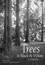 Trees In Black & White: A Visual Tour