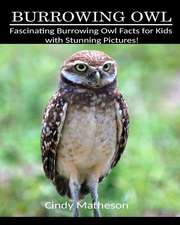 Burrowing Owl: Fascinating Burrowing Owl Facts for Kids with Stunning Pictures!