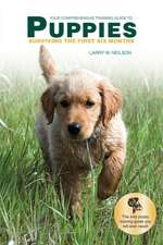 Your Comprehensive Training Guide to Puppies