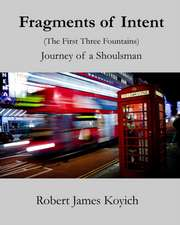 Fragments of Intent (The First Three Fountains)
