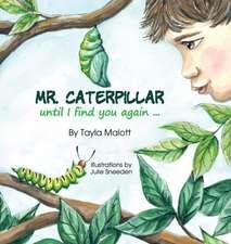 Mr. Caterpiller