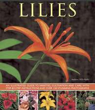 Lilies:  An Illustrated Guide to Varieties, Cultivation and Care, with Step-By-Step Instructions and Over 150 Stunning Photogra