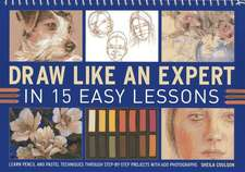Draw Like an Expert in 15 Easy Lessons