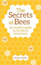 The Secrets of Bees