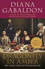Dragonfly in Amber TV Tie-In