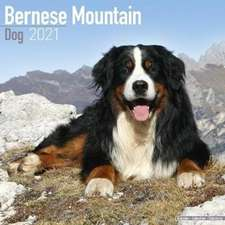 Bernese Mountain Dog 2021 Wall Calendar