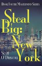 Steal Big