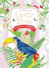 Exotic Birds Postcard Book: Colour by Numbers