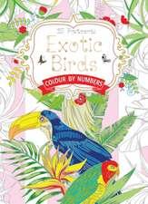 Exotic Birds Postcard Book