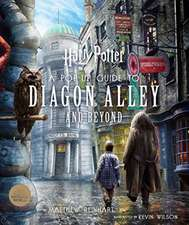 Harry Potter A Pop-Up Guide to Diagon Alley and Beyon