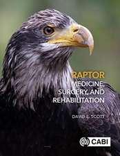 Raptor Medicine, Surgery and Rehabilitation