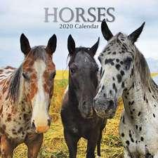 HORSES 2020