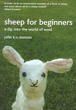 Sheep for Beginners:  A Dip Into the World of Wool