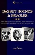 Basset Hounds & Beagles