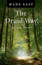 The Druid Way:  What Do Angels Think About? Is God a Deceiver? and Other Interesting Questions Considered