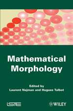 Mathematical Morphology: From Theory to Applications