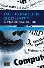 Information Security:  A Practical Guide