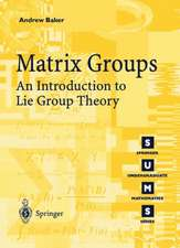 Matrix Groups: An Introduction to Lie Group Theory