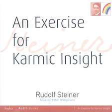 An Exercise for Karmic Insight