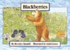Blackberries PM Yellow Set 1 Level 6