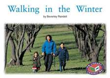 Walking in the Winter PM Non Fiction Level 14&15 Time and Season Green