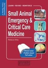 Small Animal Emergency & Critical Care Medicine